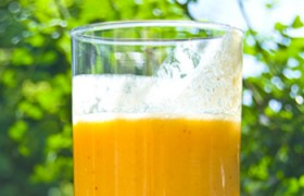 orange cream dream soy protein smoothie recipe